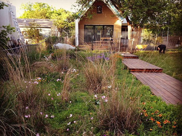 Pocket Prairie Tips On How To Make A Small Prairie In Your Garden Prairie Garden Habitat Garden Landscape Design