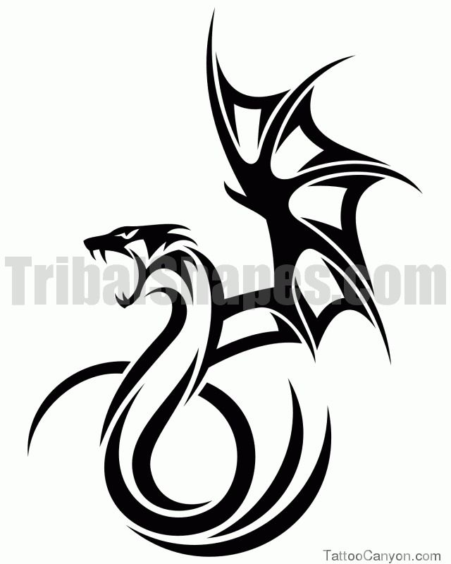 tribal tattoo gallery free dragon designs picture 12612 tattoos pinterest tribal tattoos. Black Bedroom Furniture Sets. Home Design Ideas
