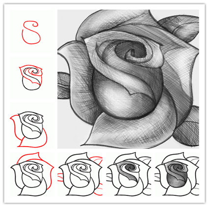 how to sketch a rose step by step desenhos pinterest sketches