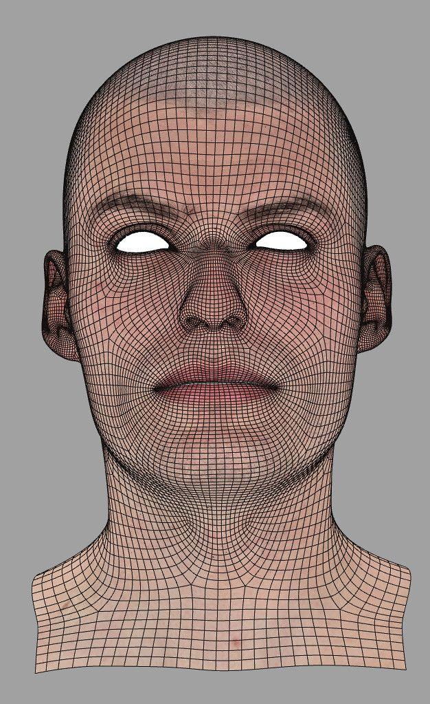 automob 3d anatomy tutorial - 626×1023