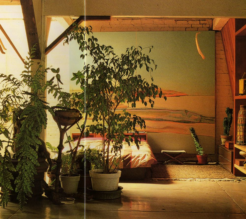 Terence Conran's Decorating with Plants | Susan Conder © 1986