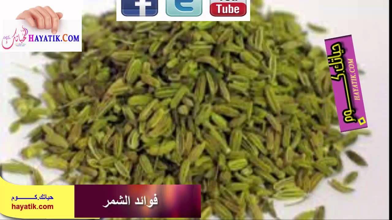 فوائد الشمر الشمر للتخسيس فوائد الشمر للتنحيف فوائد الشمر للجسم فوائد الشمر للنفاس Green Beans Vegetables Beans