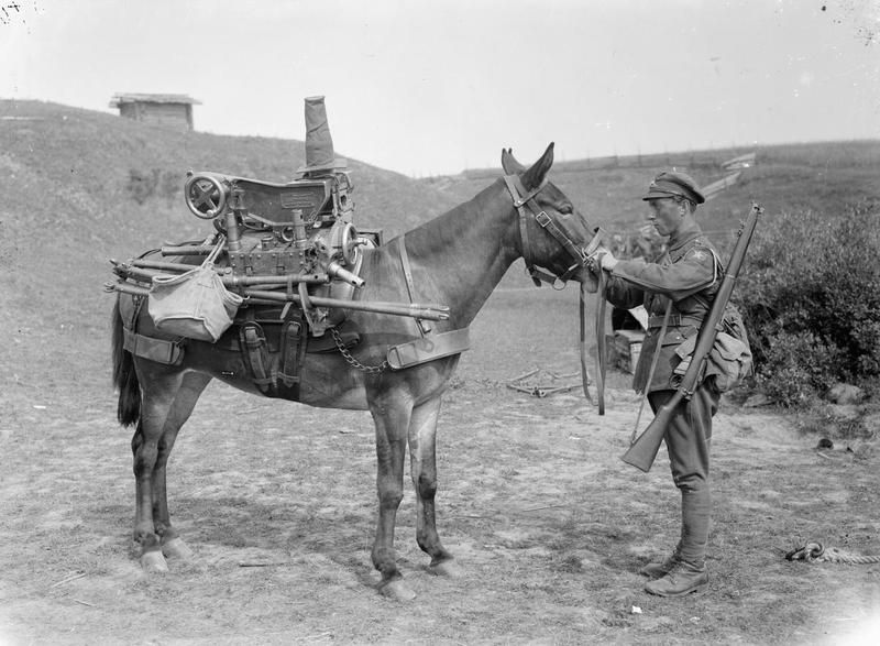 MINISTRY INFORMATION FIRST WORLD WAR OFFICIAL COLLECTION (Q 16174) 3. 7 inch mountain howitzer on pack mule. Sadleir-Jackson Brigade, Troitsa, 1919.