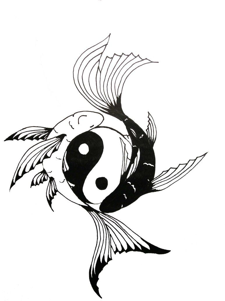 Yin yang koi fish tattoo chock full of symbolism for Koi fish lifespan
