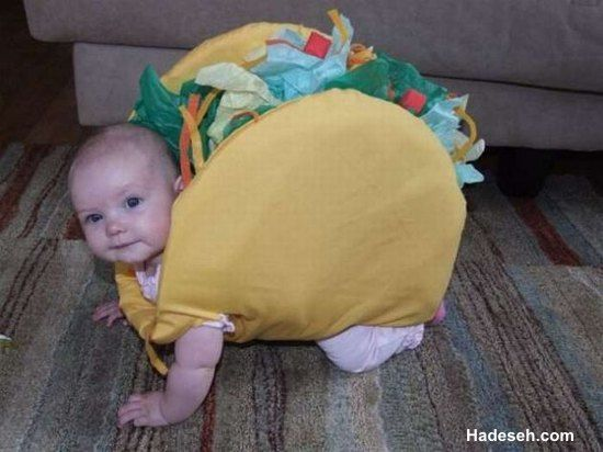 this is my future babies halloween costume you know how i love mexican food lauren moore