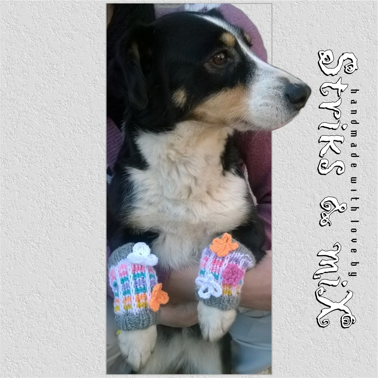 Knit leg warmers with flowers for dogs, dog leg warmers ...