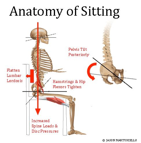 Pin By National Posture Institute On Health Articles Worth
