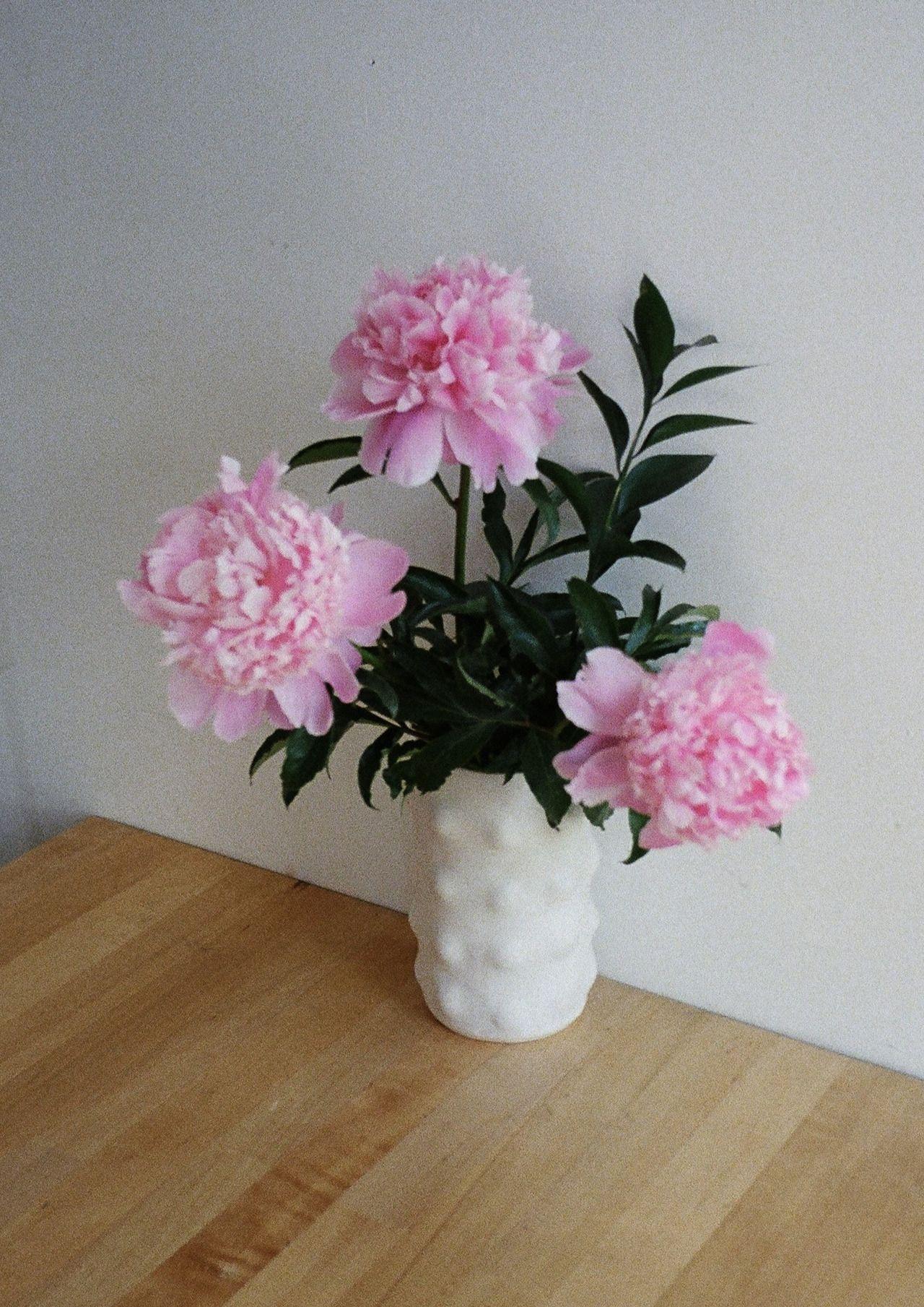 Sensation Vase, Natalie W. Ceramics  natalie-w-ceramics.tumblr.com