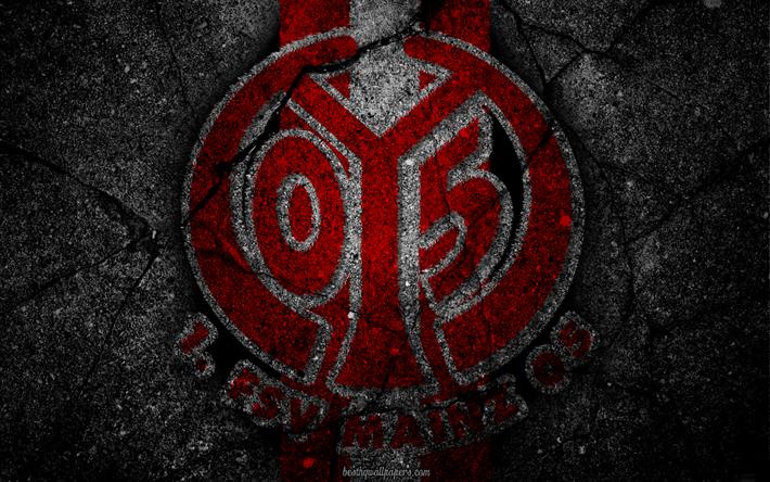Футбольный клуб майнц 05