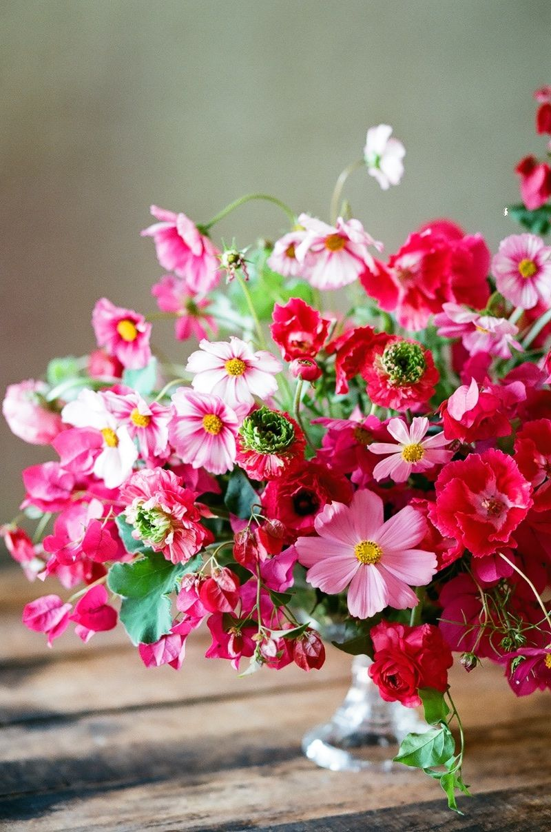 Colorful Cosmos   Autumn, Flower arrangements and Flowers
