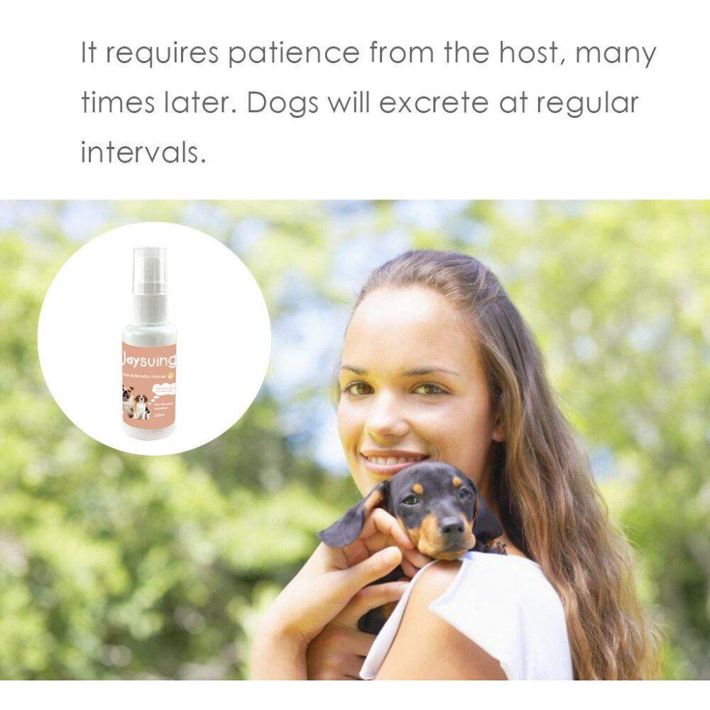 Dog Potty Training Spray 30ml Effective Pet Toilet Training Spray Dog Props Inducer Z0510 G30 In 2020 Pet Training Dog Toilet Dog Potty