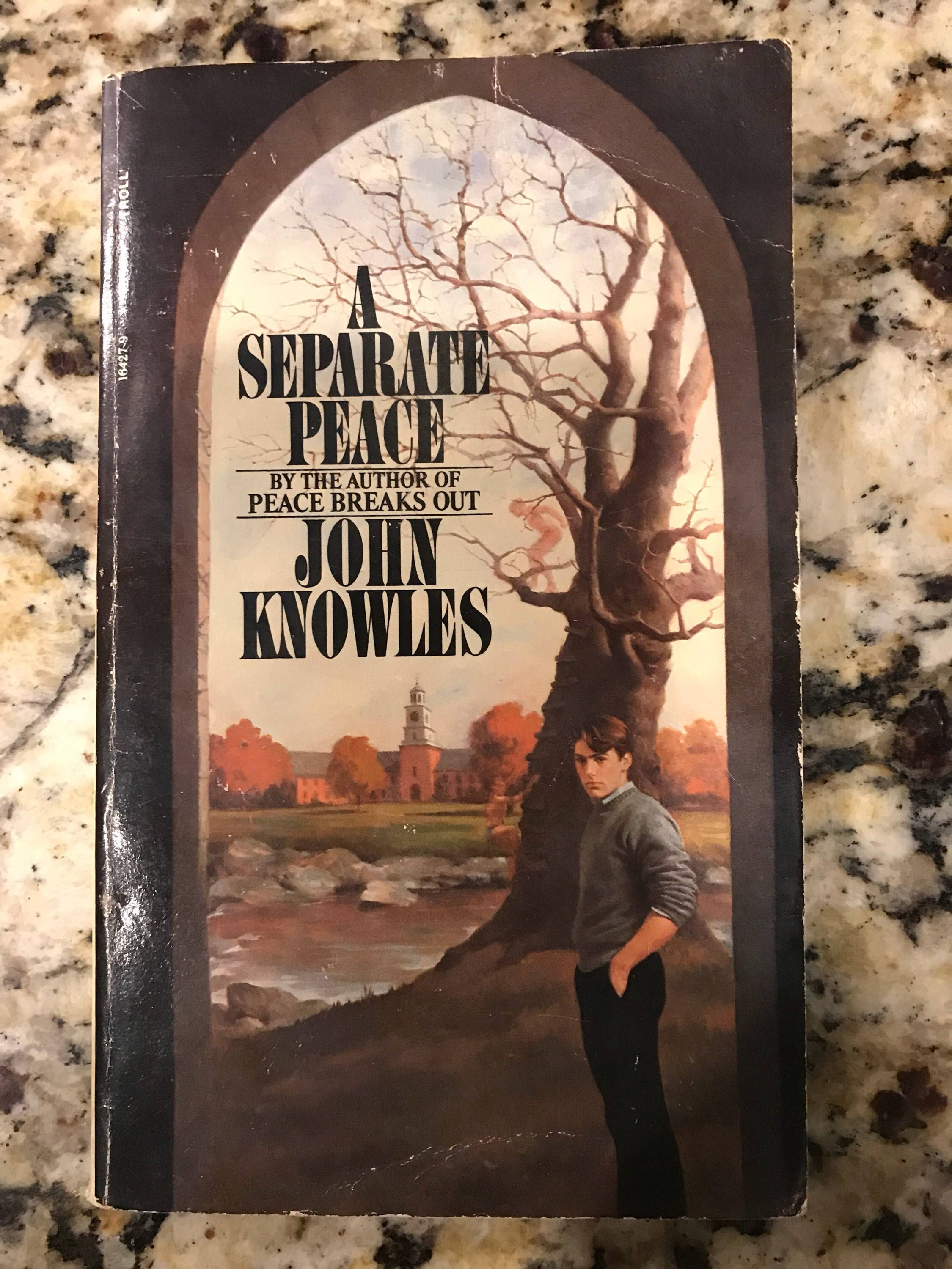 an analysis of inner peace in a separate peace by john knowles In the book a separate peace, by john knowles, there are many interesting characters and different personalities of each character meet john doe film analysis - john doe played by gary cooper a separate peace - gene and phineas's relationship essay.