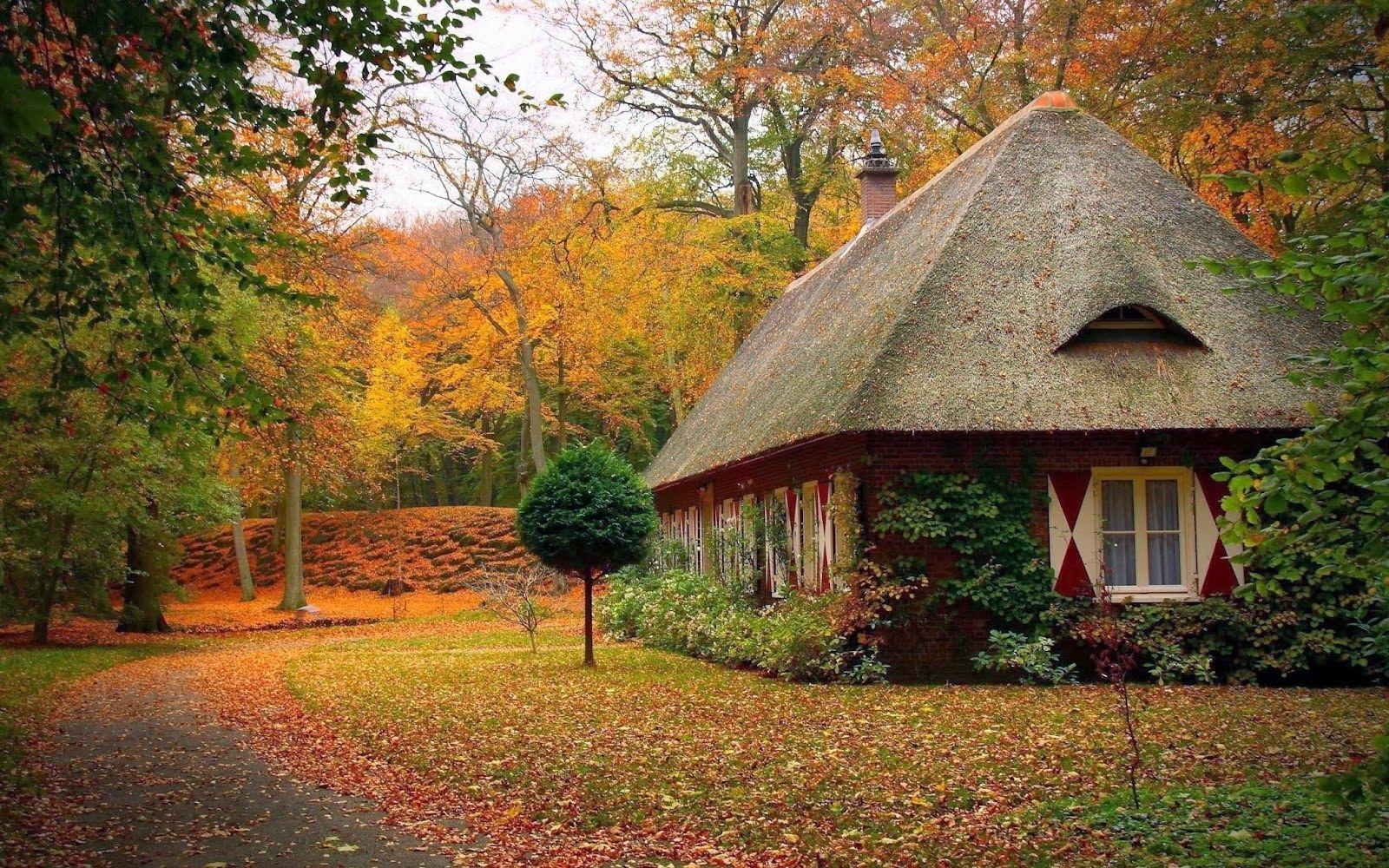 Beautiful HD Wallpapers Nature Best Mix