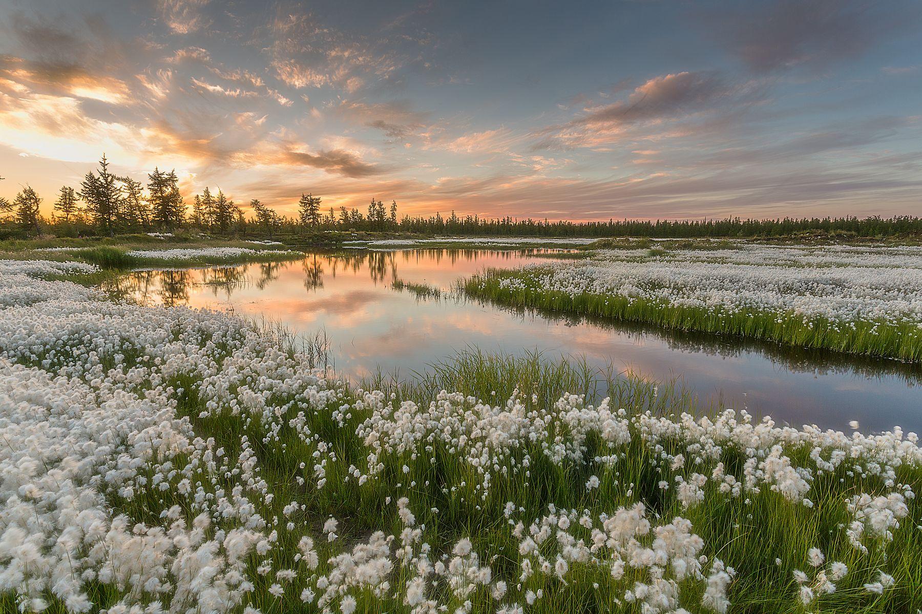 цилиндр наполняется картинки весна красивые пейзажи утро стучит тебе