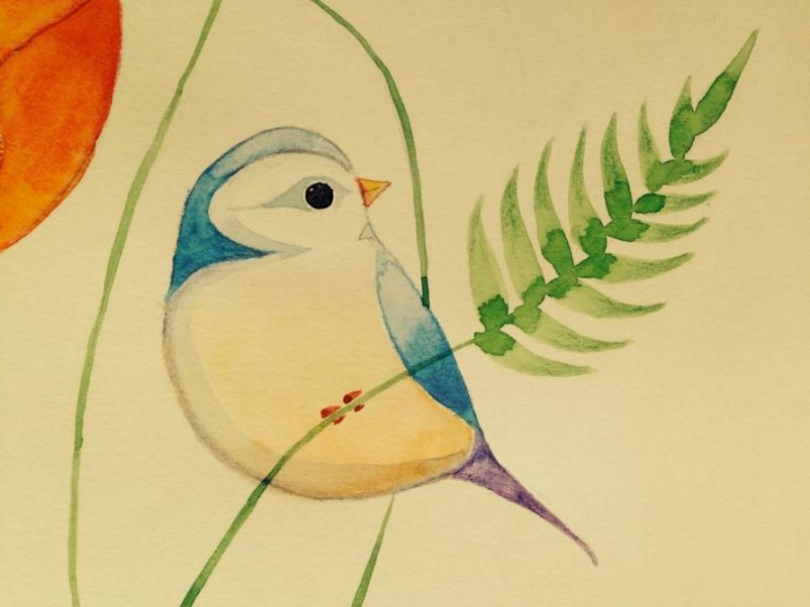 Bird Birds Drawings Pictures Drawings Ideas For Kids Easy And