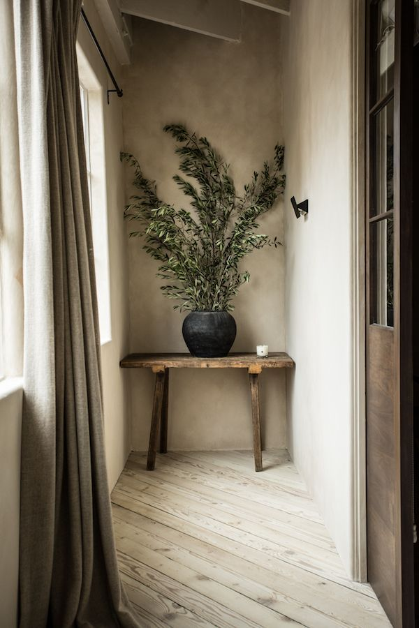 Photo of Beige hallway with large plant