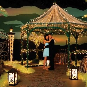 Go gorgeous in the garden with a sparkly sensational prom forever in the twilight complete theme junglespirit Gallery