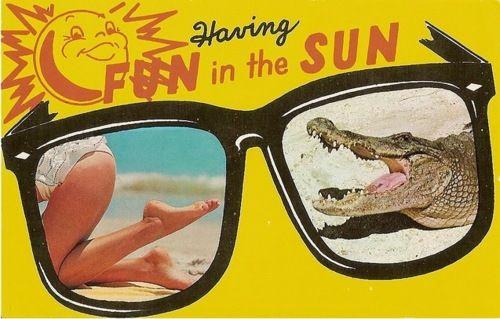 bikini destinations california dreamin