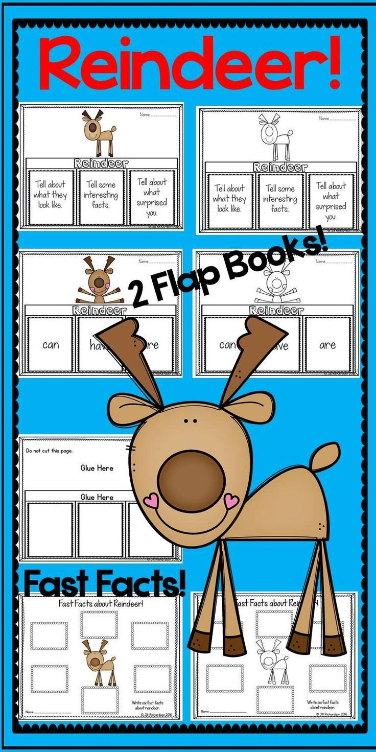 Reindeer Writing Flap Books | White reindeer, Interesting facts and ...