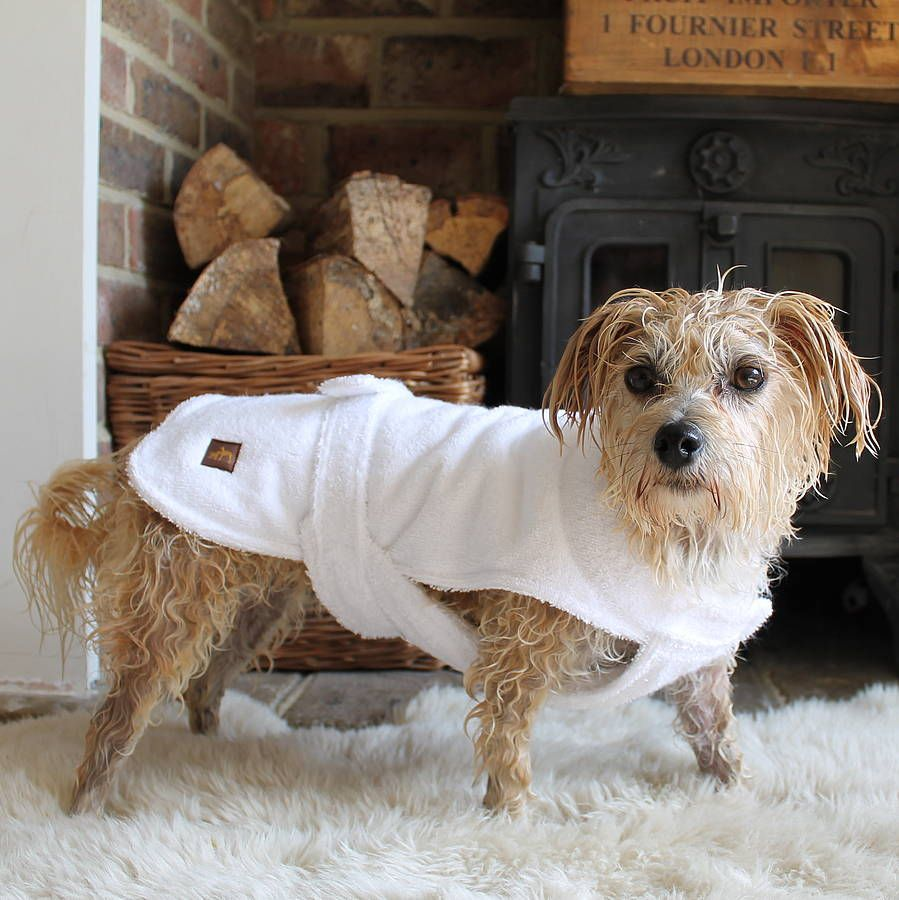 After Bath Dog Towelling Robe Cute Dog Clothes Dog Spa Dogs
