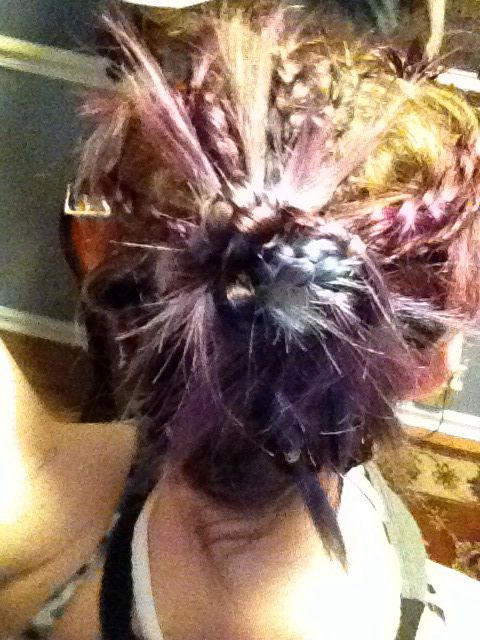 Lots of braids put into a bun