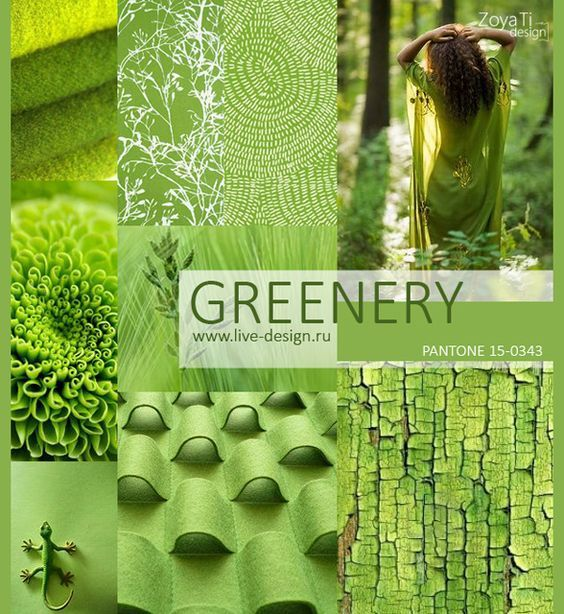 color de tendencia primavera verano 2017 pantone greenery of the year colour 497 c 189