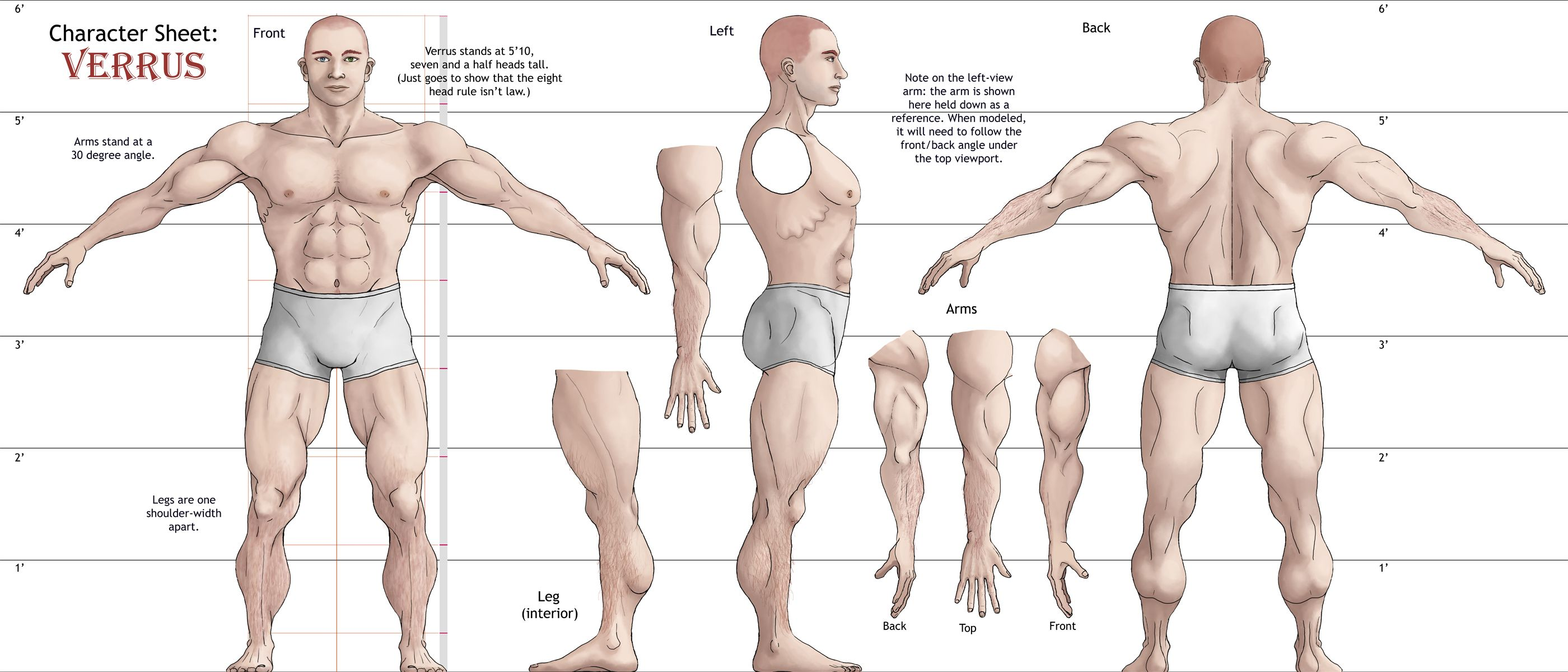 verrus, 3d reference sheet by ~elizawyatt on deviantart, Muscles