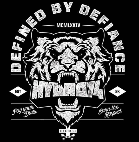Hydro74 Symbol design, Tiger design, Logo design inspiration