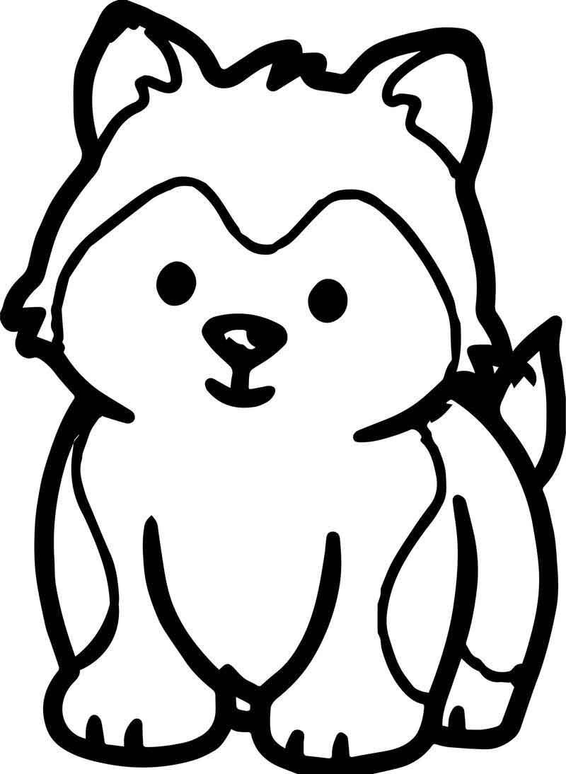 Husky Puppy Dog Puppy Coloring Page  Cute husky puppies, Puppy