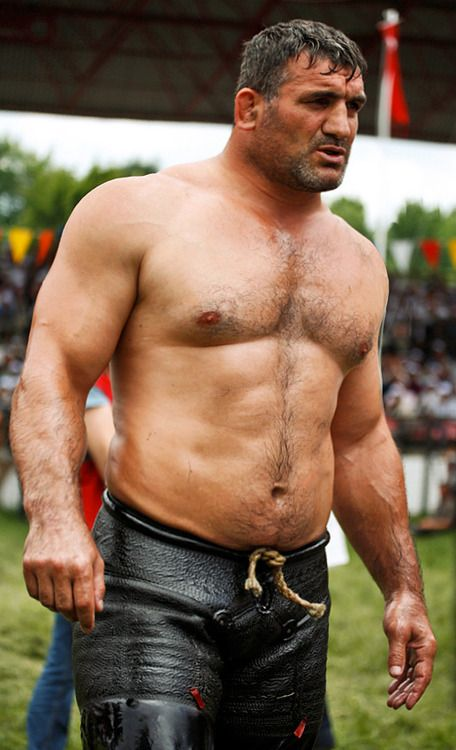 Beefy bear wrestlers part ii