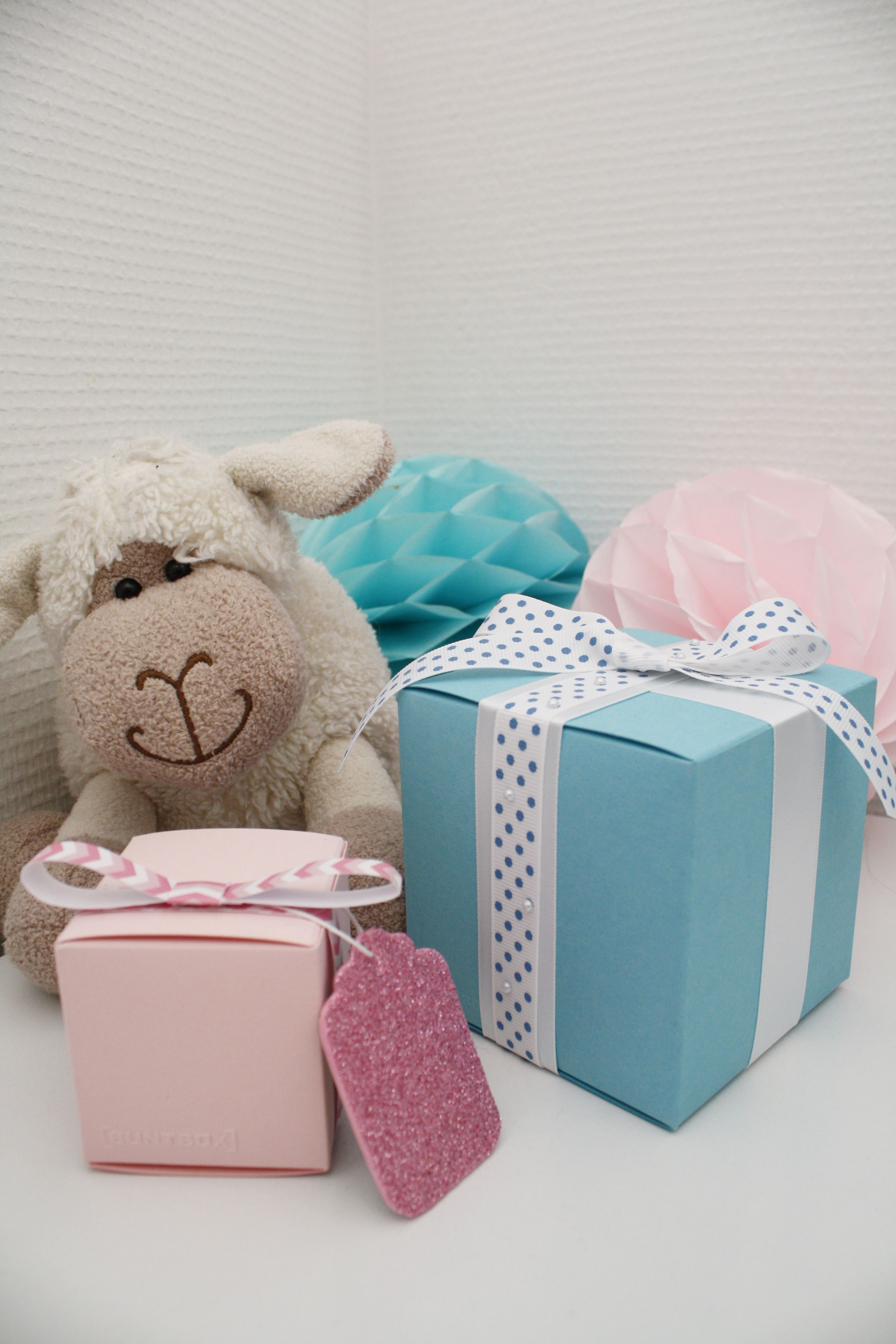 Baby Blue And Baby Pink Buntbox Colour Cubes In Flamingo And