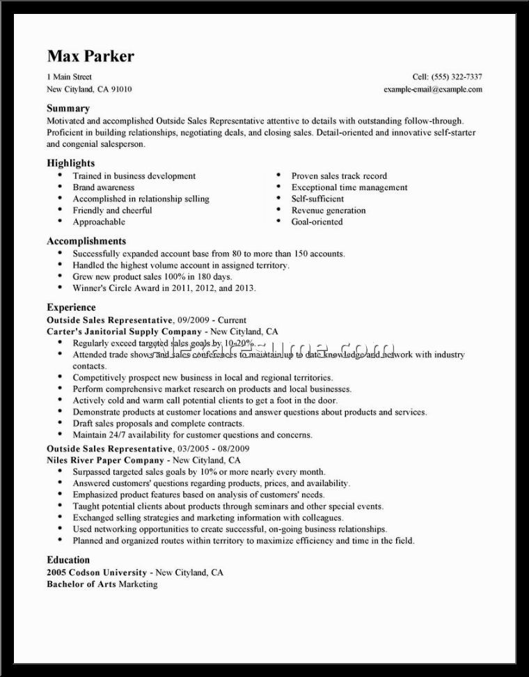 sales representative resume examples pharmaceutical format - outside sales resume example