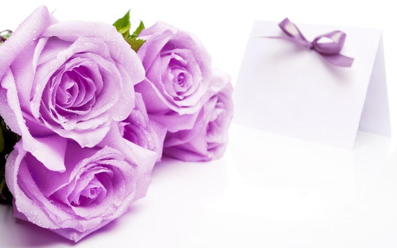 Purple Heart And Rose Wallpapers Hd Desktop Wallpaper Flowers