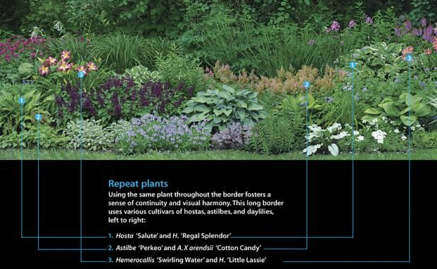 A Strategy for a Long Border | Fine Gardening