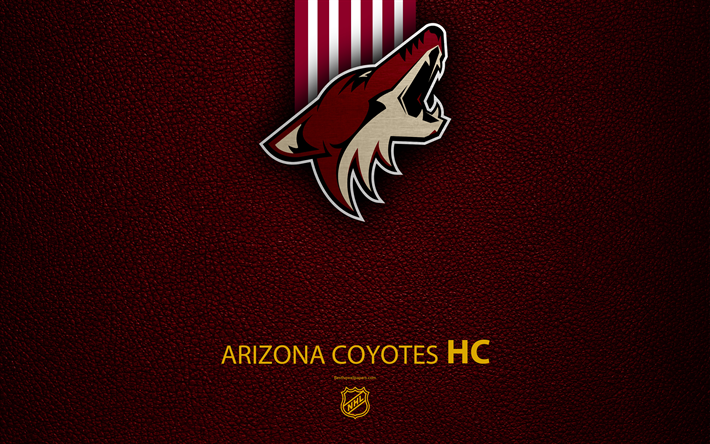 """Arizona Coyotes Vertical House Flag NHL Licensed Hockey Double Sided 28/""""x40/"""""""