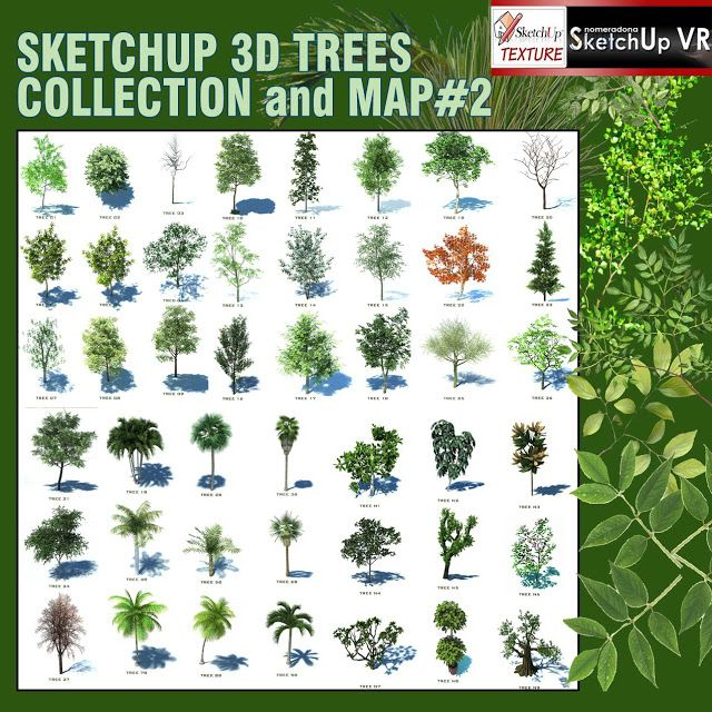SKETCHUP TEXTURE: SKETCHUP 3D TREES COMPONENTS COLLECTION #2 ...