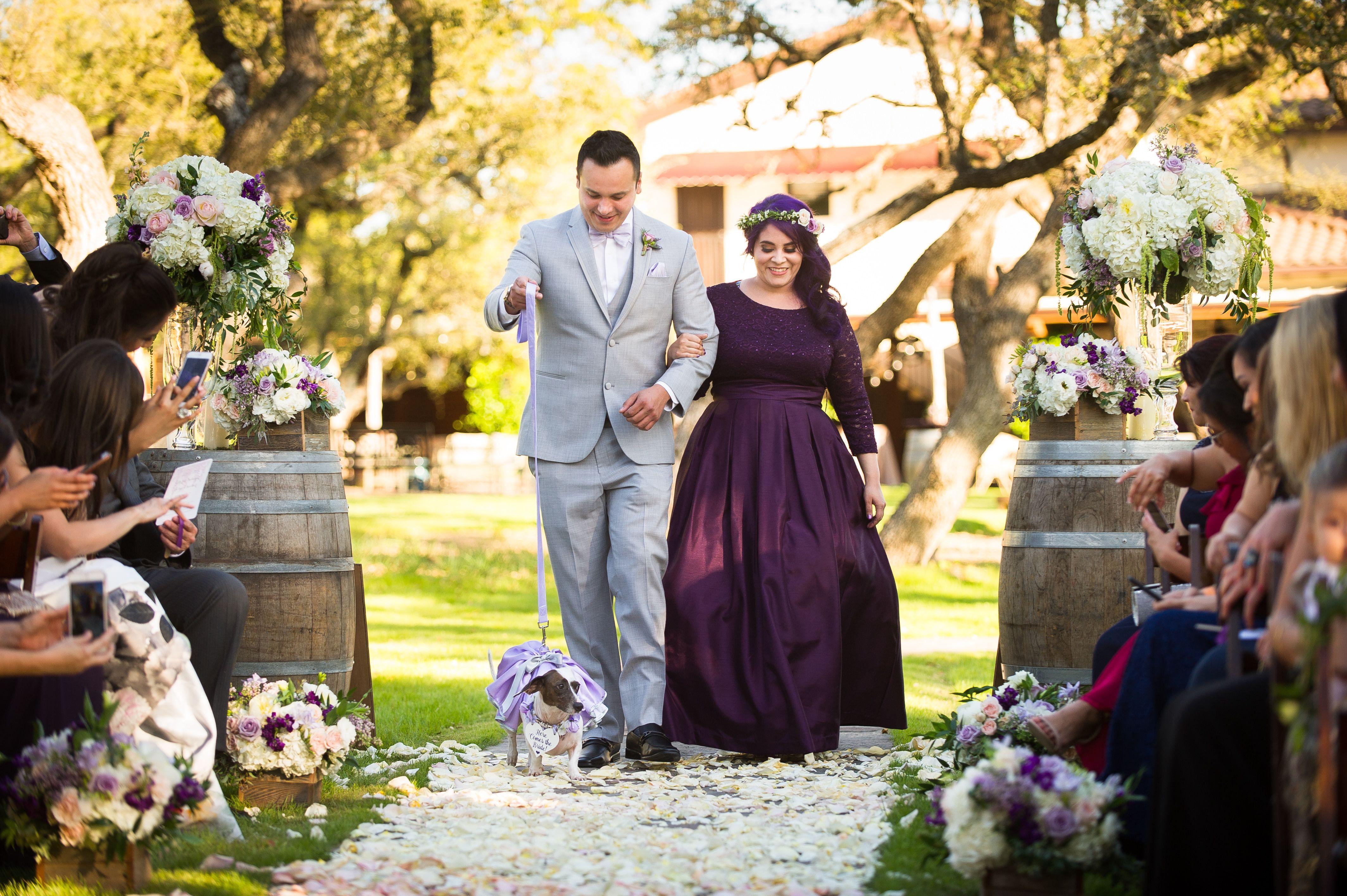 Texas Hill Country Wedding Venue Wedding venues, Wedding