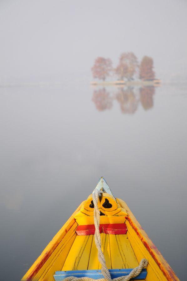 Dal Lake, Srinagar, Kashmir - A shikara boat heads for the Char ChinarUntitled by Anoop Negi, via 500px