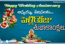 Marriage Anniversary Wishes To Anna Vadhina In Telugu S Wedding