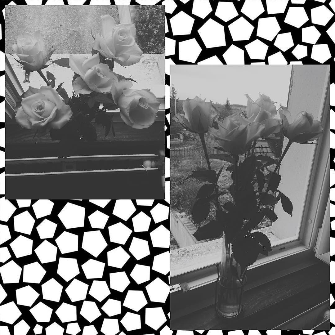 #14février2016 #Saintvalentin #16février2016 #3ans # #valentineday #rosesblanches by maanon_lbh