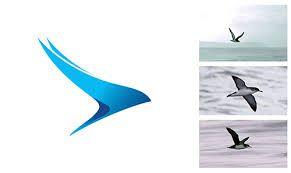 Image result for bird wing logo
