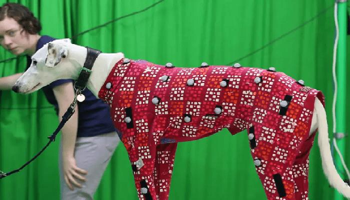 Nuova tecnologia trasforma il tuo cane in una star del