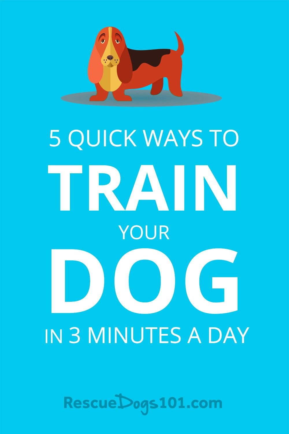 5 Quick Ways To Train Your Dog In 3 Minutes A Day