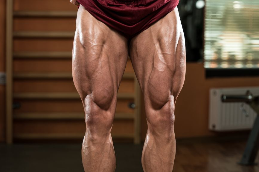 Bodybuilder Legs   Workout Ideas/Exercise Info   Pinterest ...
