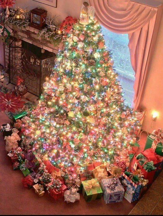 Almost christmas Christmas trees Pinterest Christmas tree and