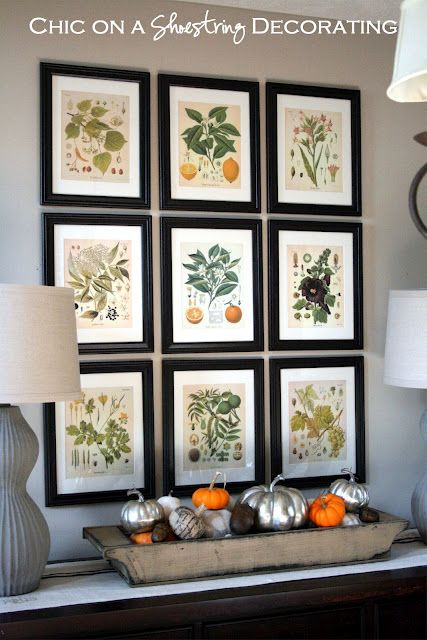 Free botanical prints framed with inexpensive frames from Michaels ...