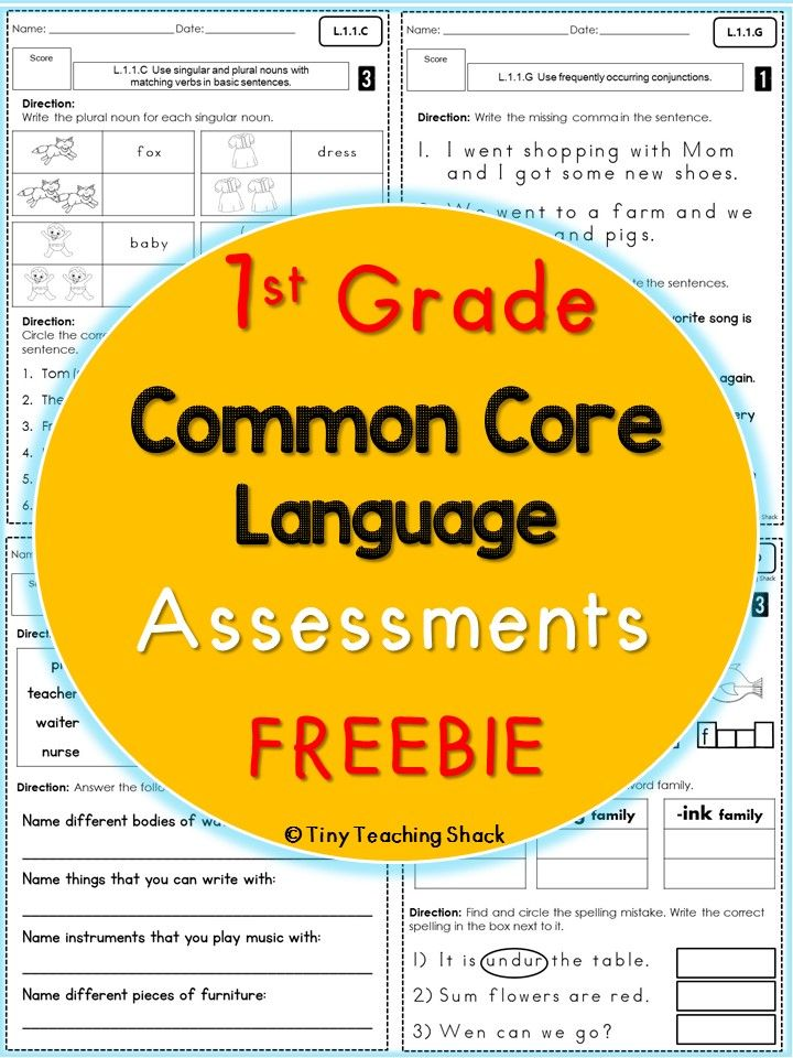 First Grade Common Core Language Assessments Freebie First Grade