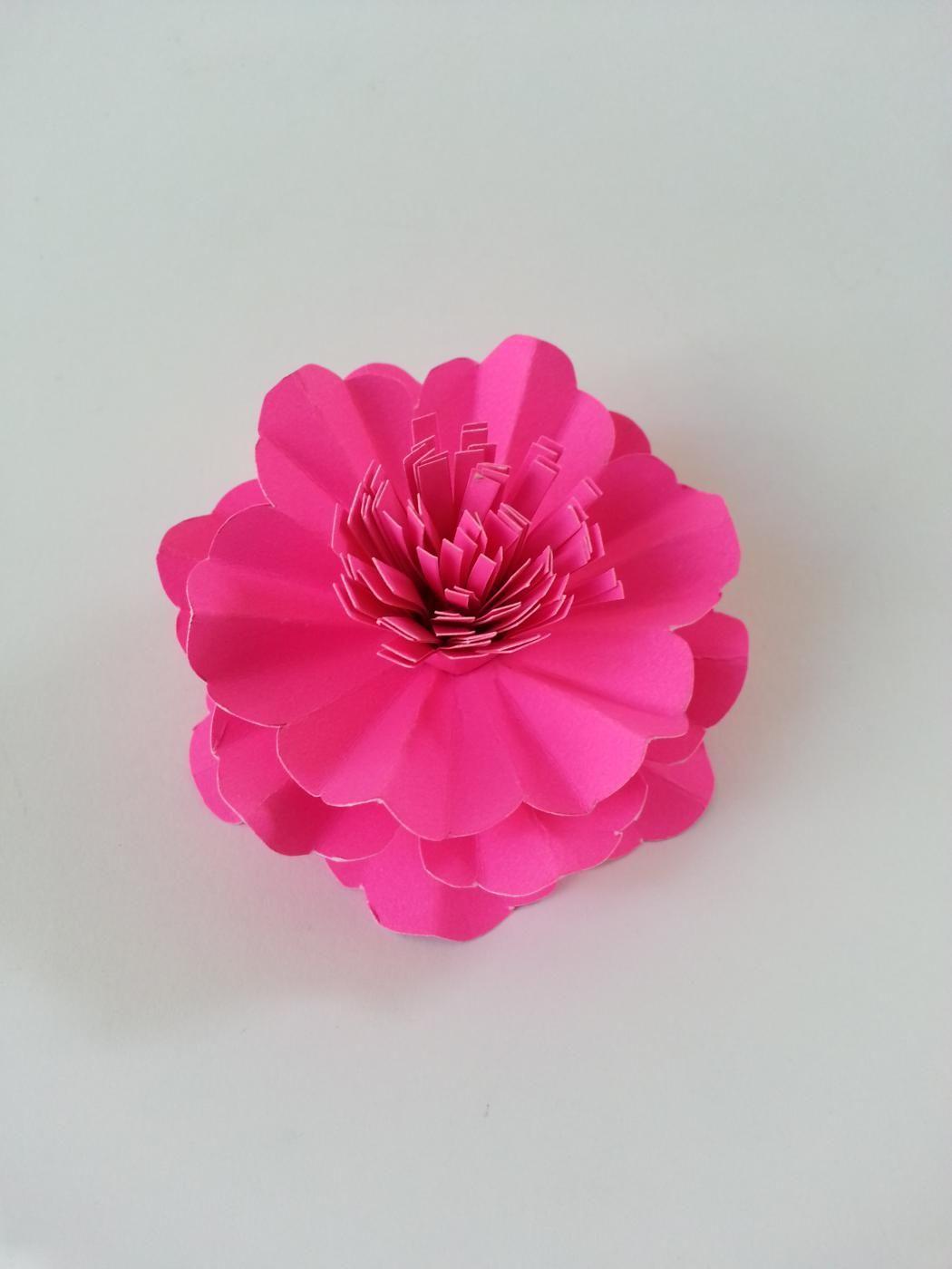 Diy paper carnation flower diy flowers bows ideas pinterest diy paper carnation flower mightylinksfo