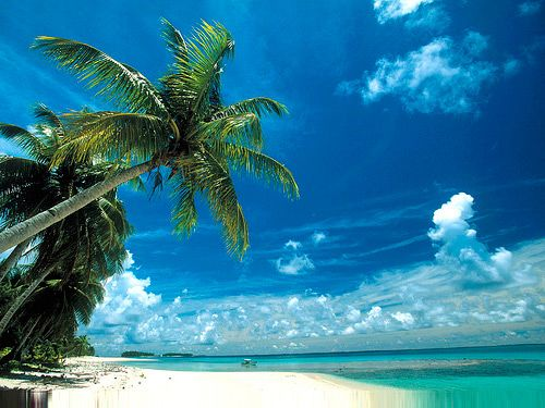 Marshall Islands In The Pacific | situated amid the micronesian islands of the pacific ocean bikini