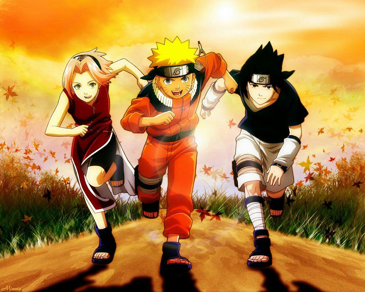 Team 7 Sakura e sasuke, Anime naruto